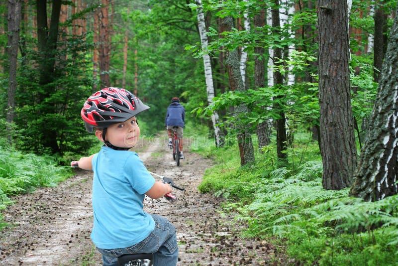 Desengate da bicicleta através da floresta fotos de stock royalty free