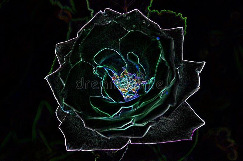 Desenho Abstrato De Uma Rosa Em Cores Sombrios Usando O