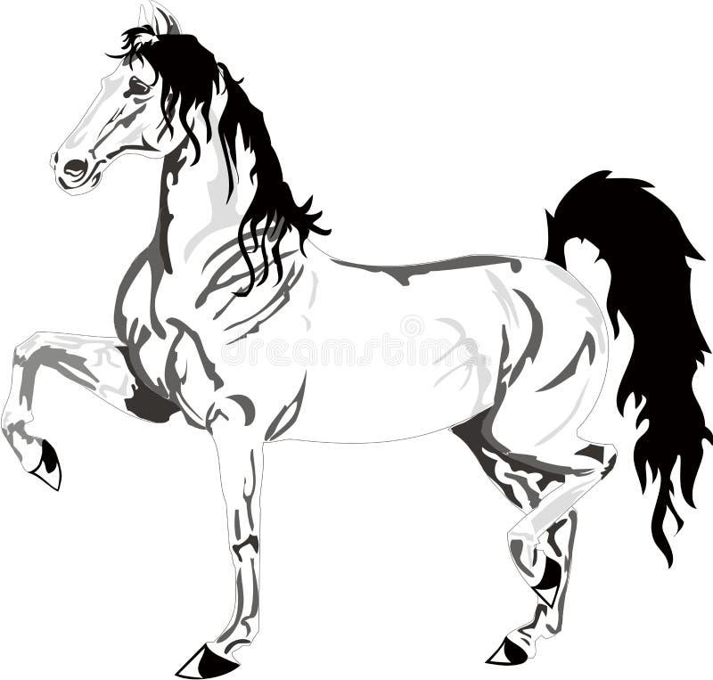 Desenho Bonito Do Cavalo, Preto E Branco Ilustração Do