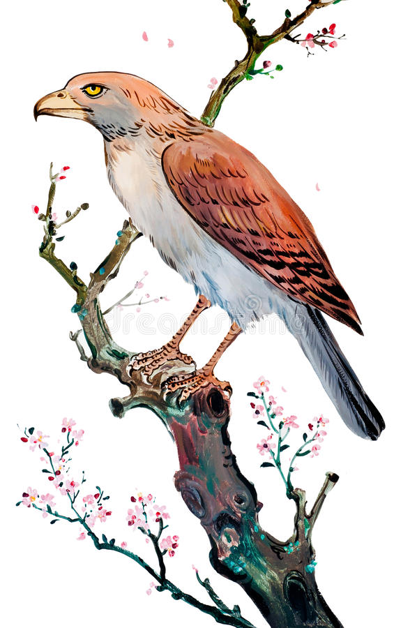 Desenho chinês do pássaro ilustração do vetor
