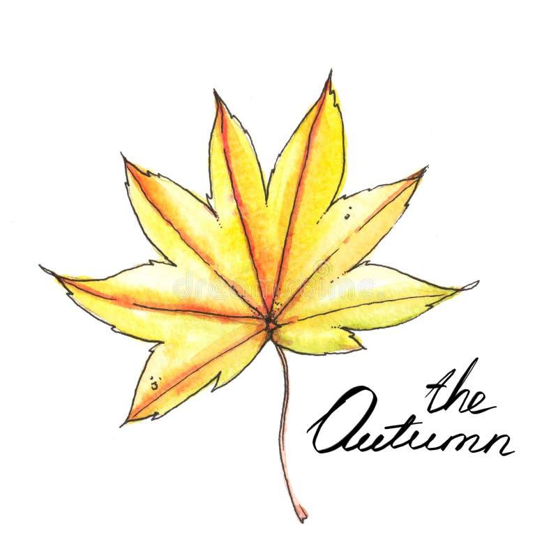 Desenho da aquarela e da tinta, folha colorida amarela no fundo branco ilustração royalty free