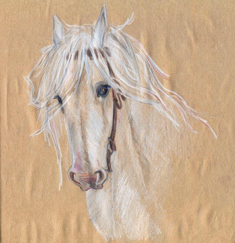Desenho de lápis colorido de um cavalo branco Olhos bonitos ilustração stock
