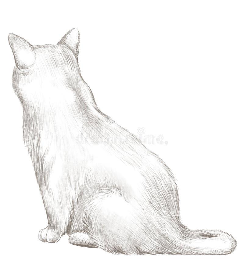 Desenho de lápis com assento do gato cinzento traseiro ilustração do vetor