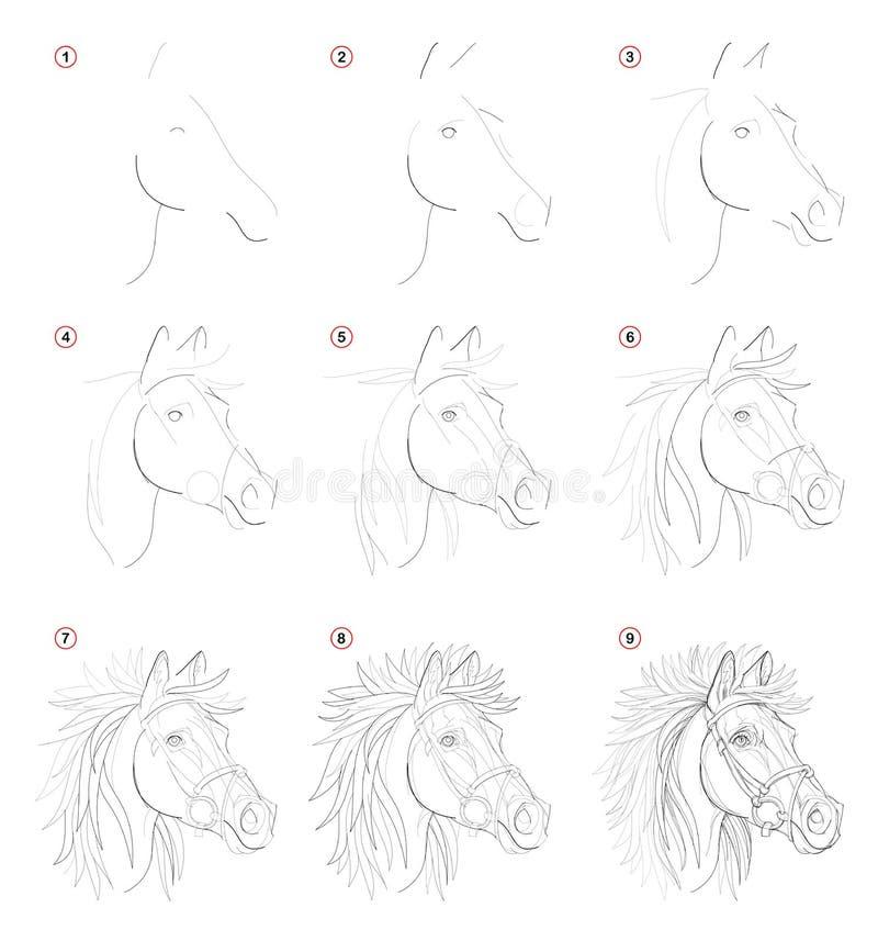 Desenho de lápis passo a passo da criação Mostras da página como aprenda tirar o esboço da cabeça de cavalos imaginária ilustração royalty free