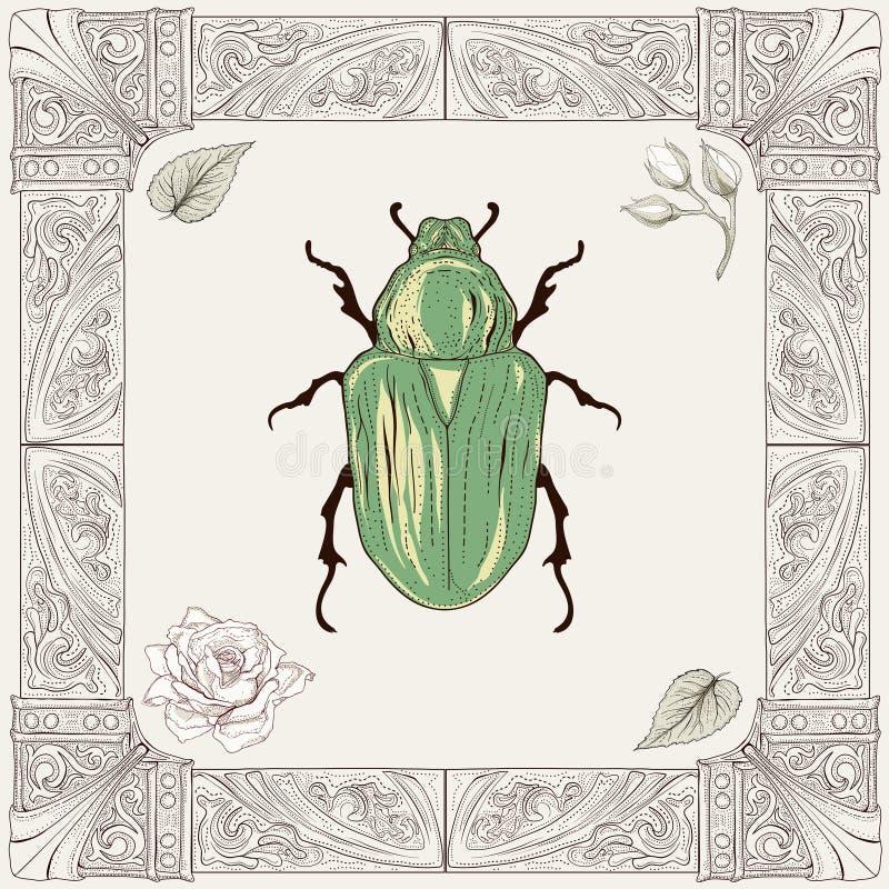 Desenho do besouro da forra ilustração do vetor
