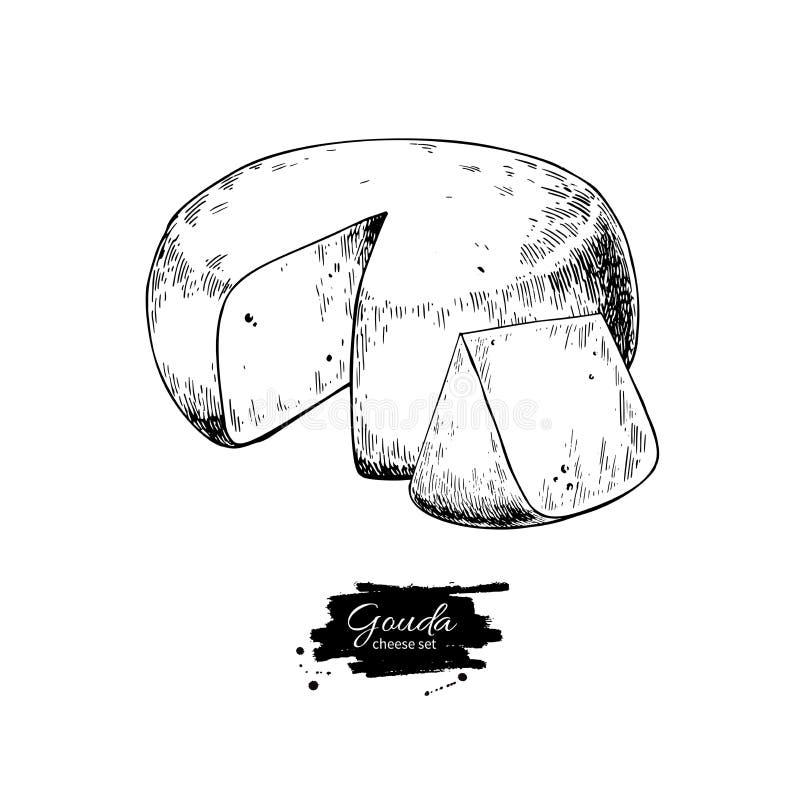 Desenho do bloco do queijo de Gouda Esboço tirado mão do alimento do vetor Corte gravado da fatia ilustração royalty free