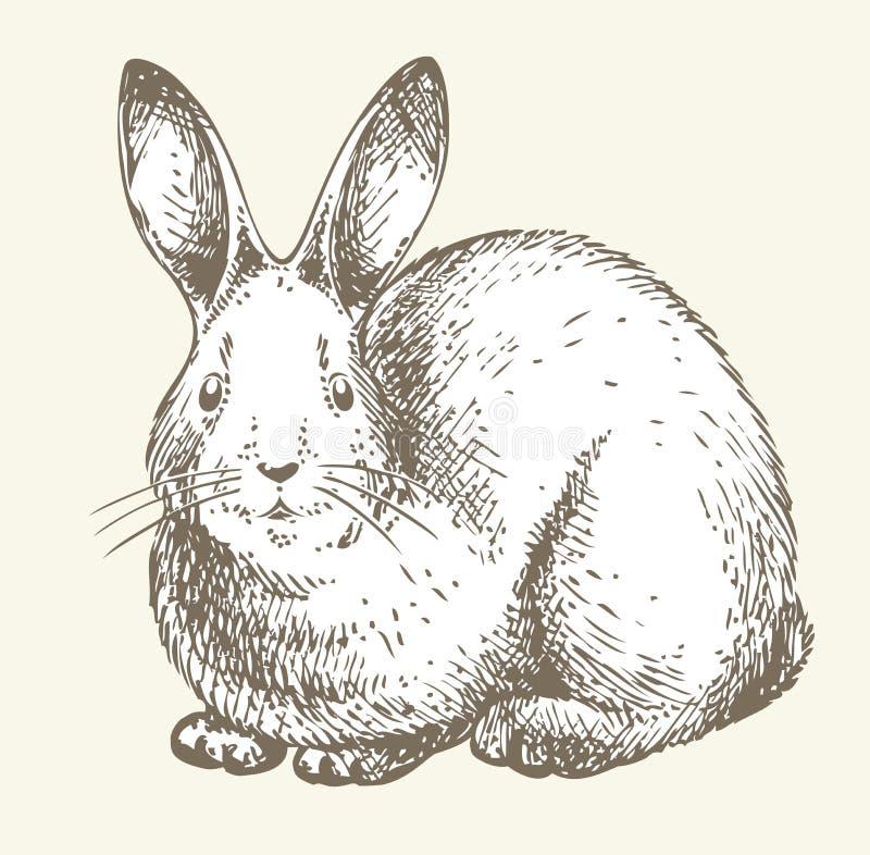 Desenho do coelho do ano novo ilustração stock
