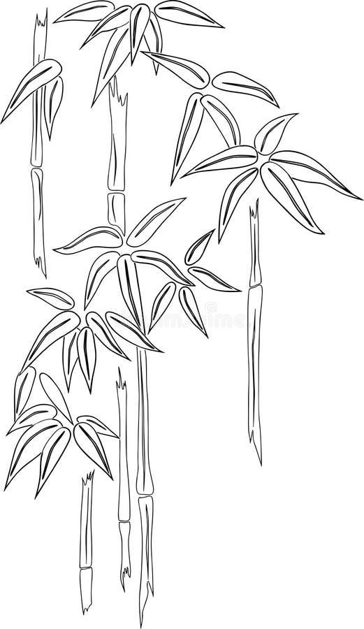 Desenho do contorno do bambu tropical ilustração do vetor
