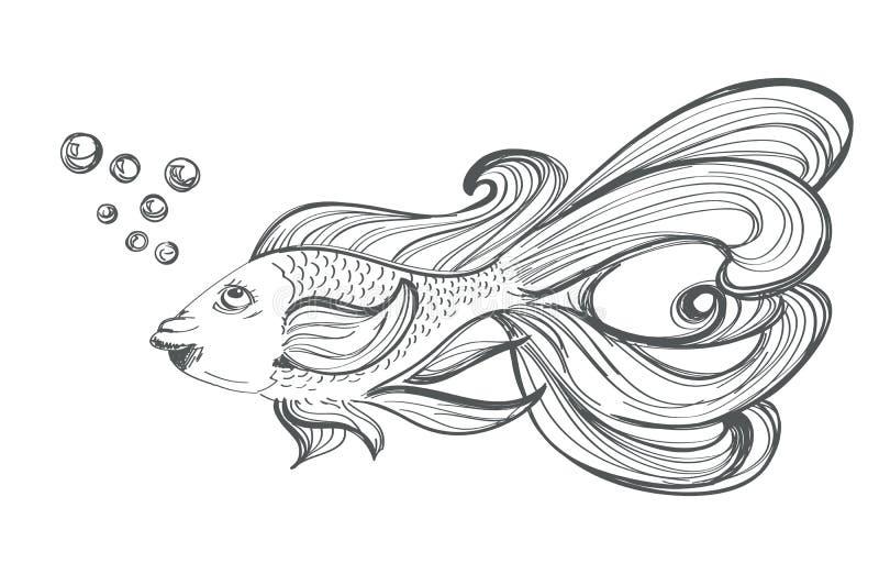 Desenho do peixe dourado ilustração royalty free