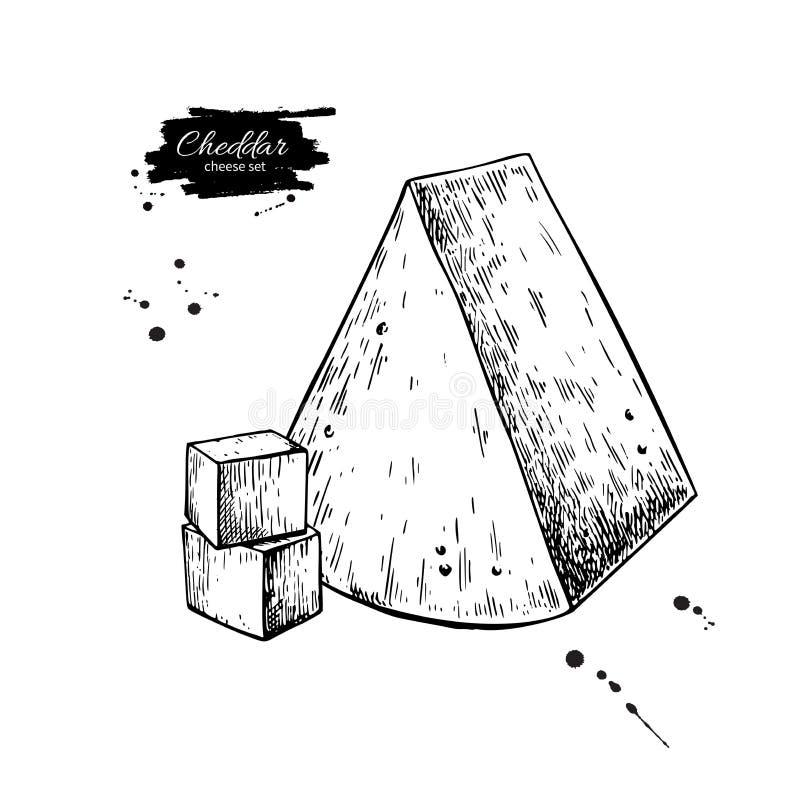 Desenho do queijo cheddar Esboço tirado mão do alimento do vetor Fatia gravada do triângulo ilustração do vetor