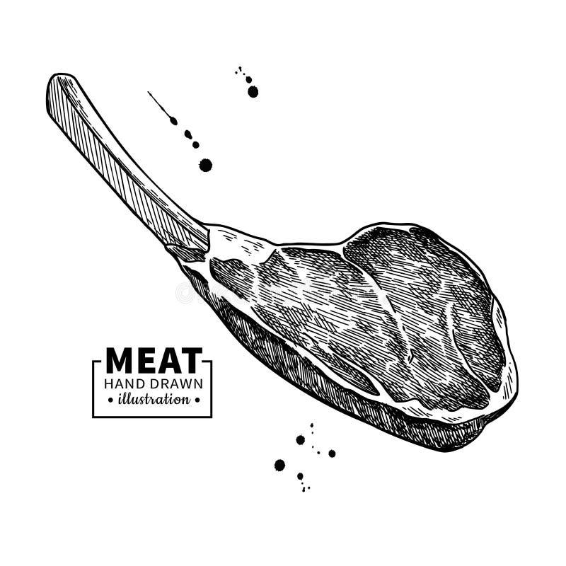 Desenho do vetor da costela de primeira qualidade Esboço tirado mão da carne vermelha da carne, da carne de porco ou do cordeiro ilustração stock