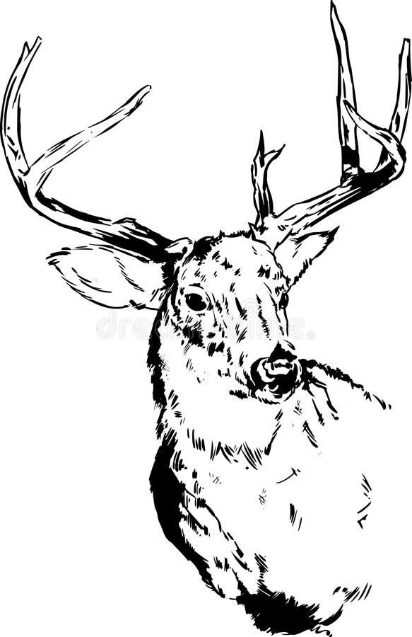 Desenho dos cervos/rena ilustração stock