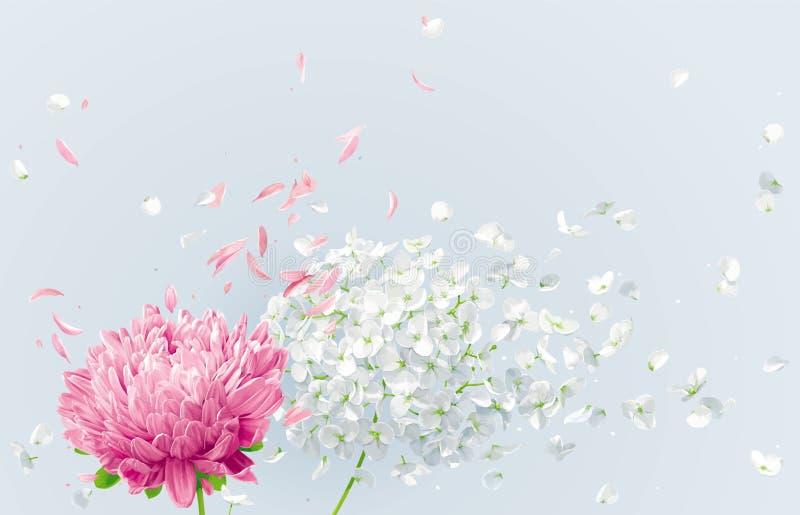 Desenho floral do vetor do vento do verão ilustração royalty free