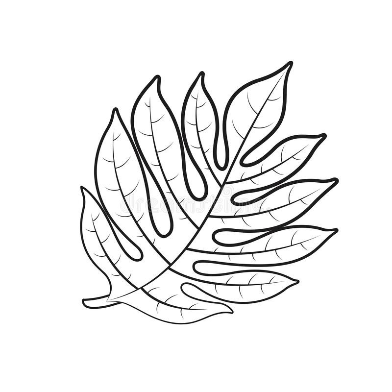 Desenho preto da folha das frutas-pão do esboço ilustração stock