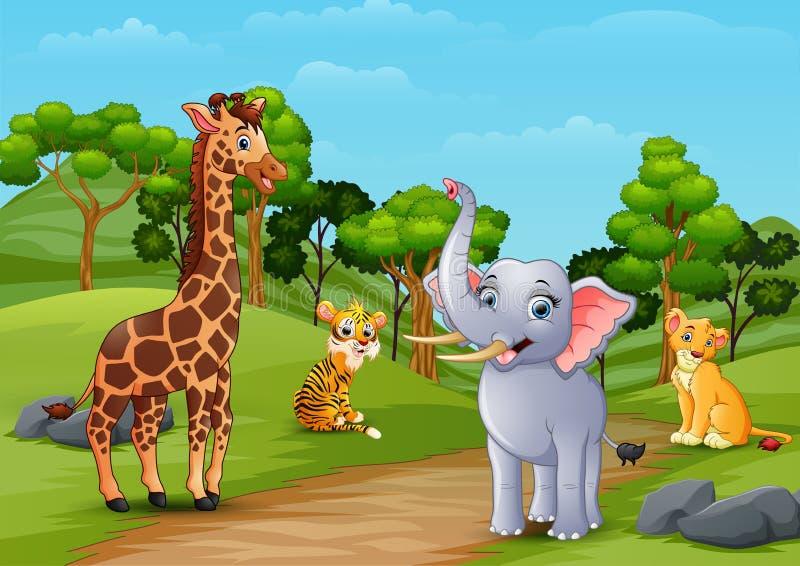 Desenhos animados animais selvagens que jogam na selva ilustração do vetor