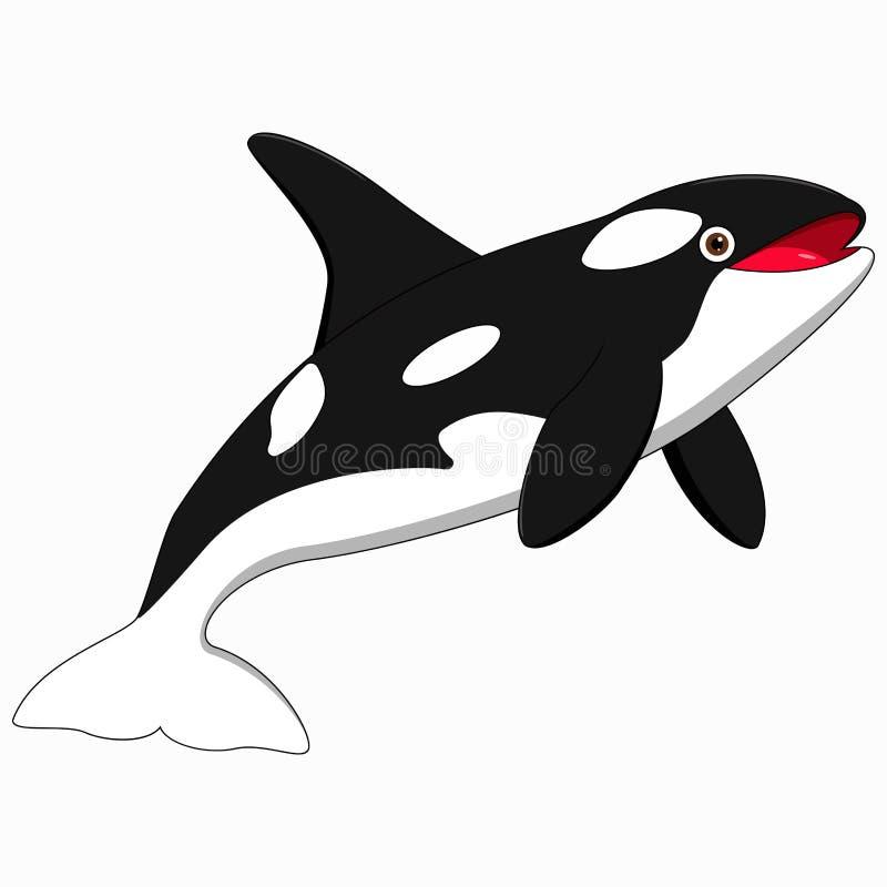 Desenhos animados bonitos da baleia de assassino ilustração stock