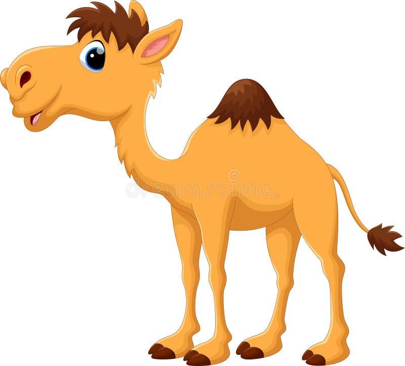 Desenhos animados bonitos do camelo ilustração royalty free