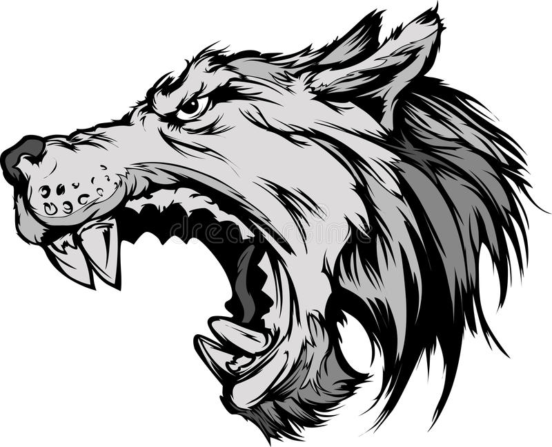 Desenhos animados da cabeça da mascote do lobo dos desenhos animados da cabeça da mascote do lobo