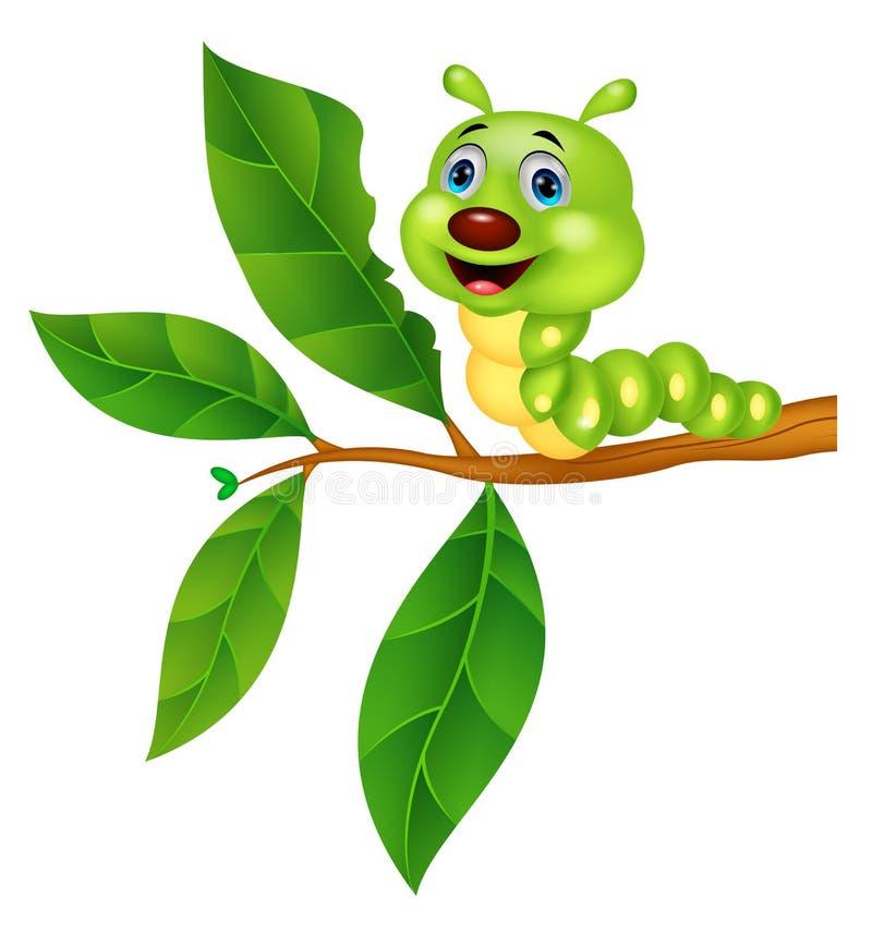 Desenhos animados de Caterpillar que comem a folha ilustração royalty free