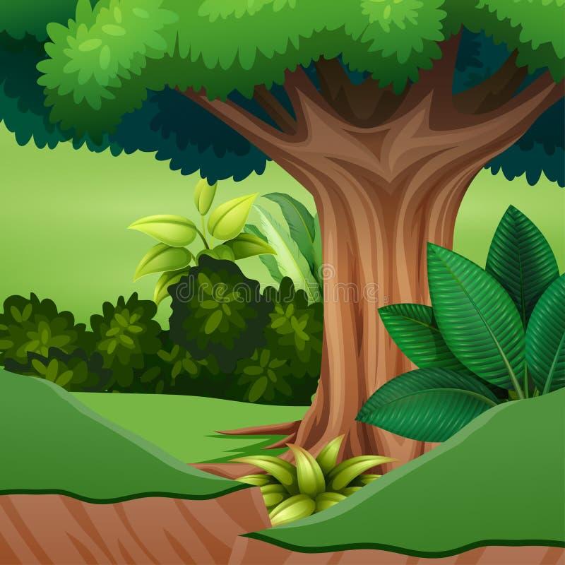 Desenhos animados de uma árvore grande na floresta ilustração do vetor