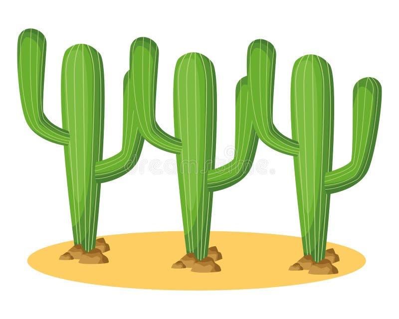 Desenhos animados do ícone da planta de três cactos ilustração do vetor