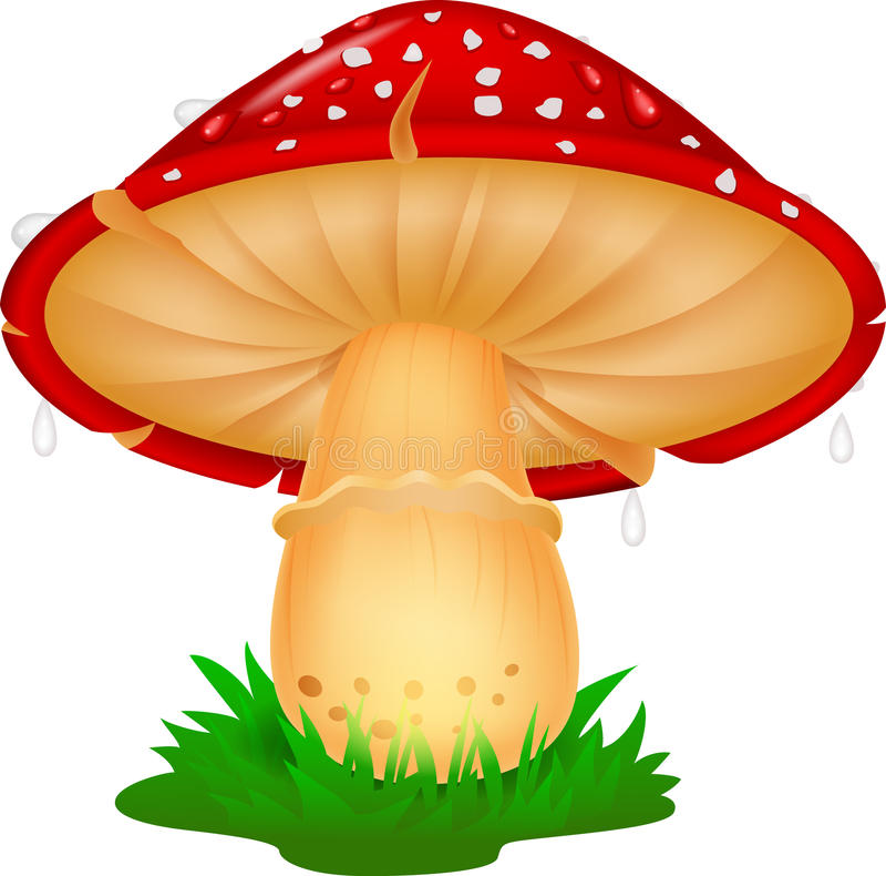 Desenhos animados do cogumelo da natureza ilustração do vetor