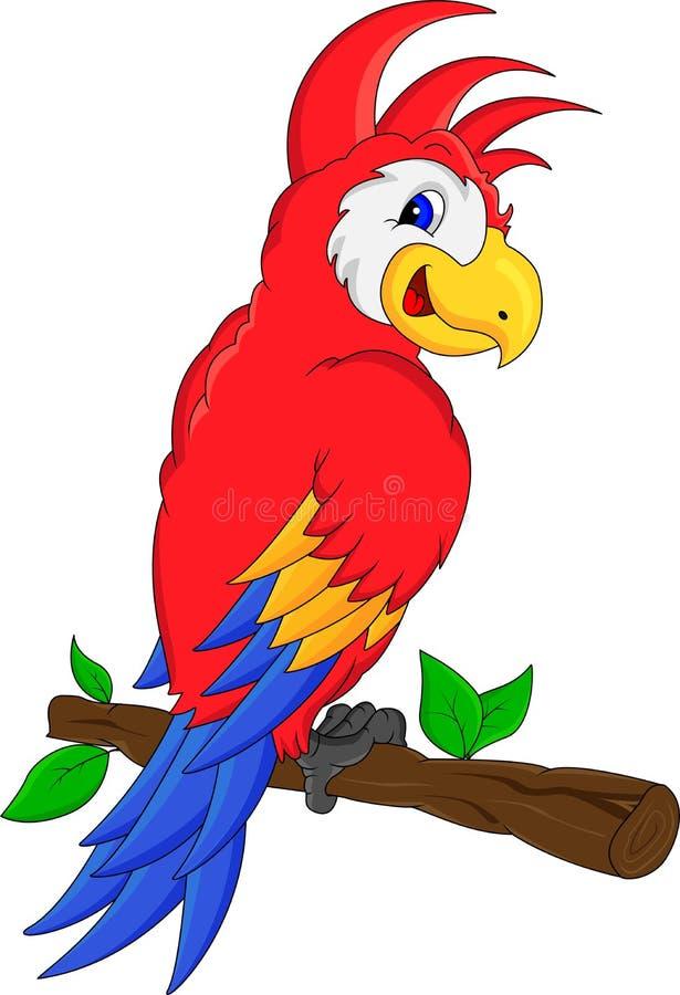 Muitas vezes Desenhos Animados Do Pássaro Da Arara Ilustração do Vetor  PY02