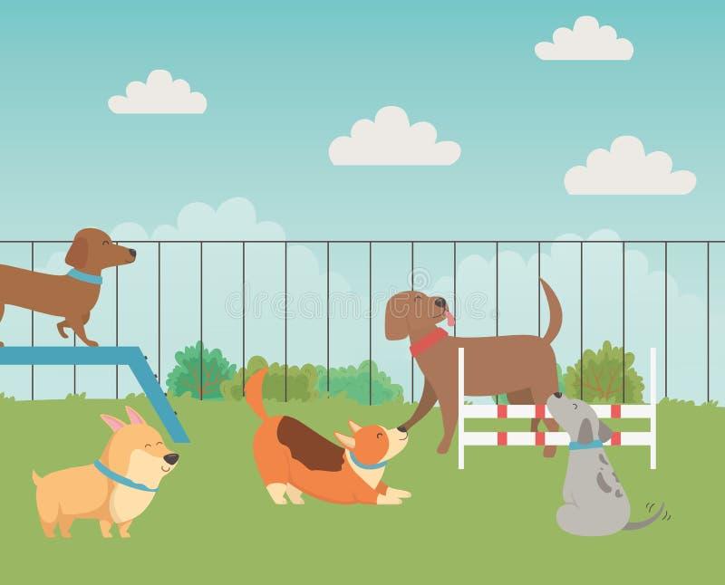 Desenhos animados dos cães no projeto do parque ilustração do vetor