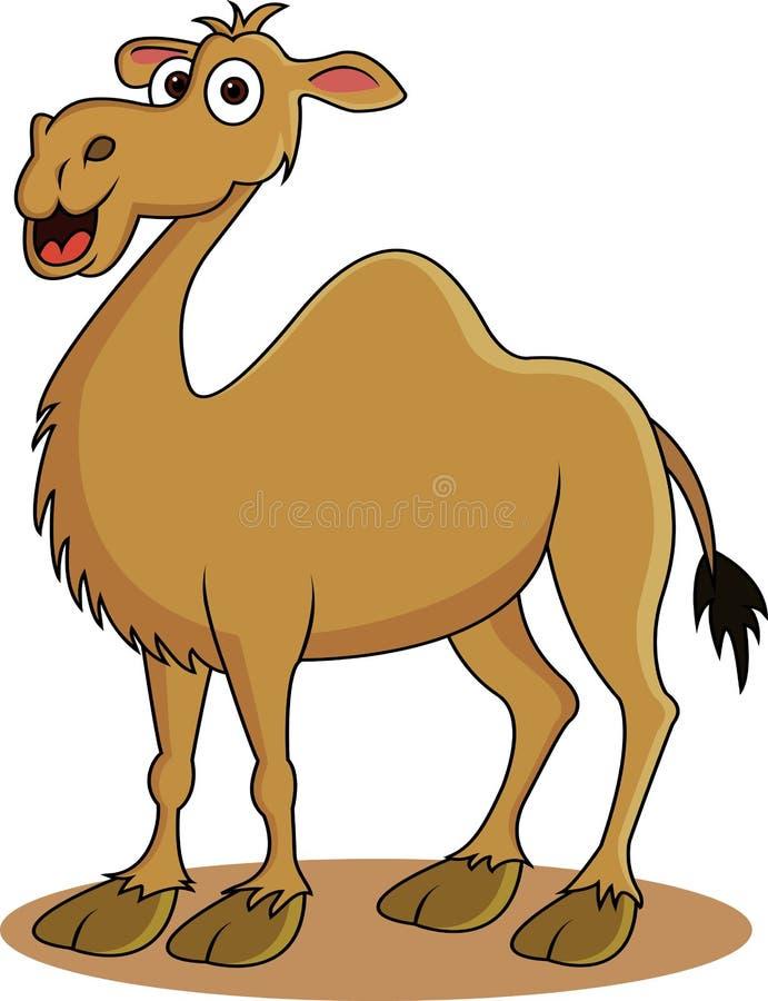 Desenhos animados engraçados do camelo ilustração royalty free