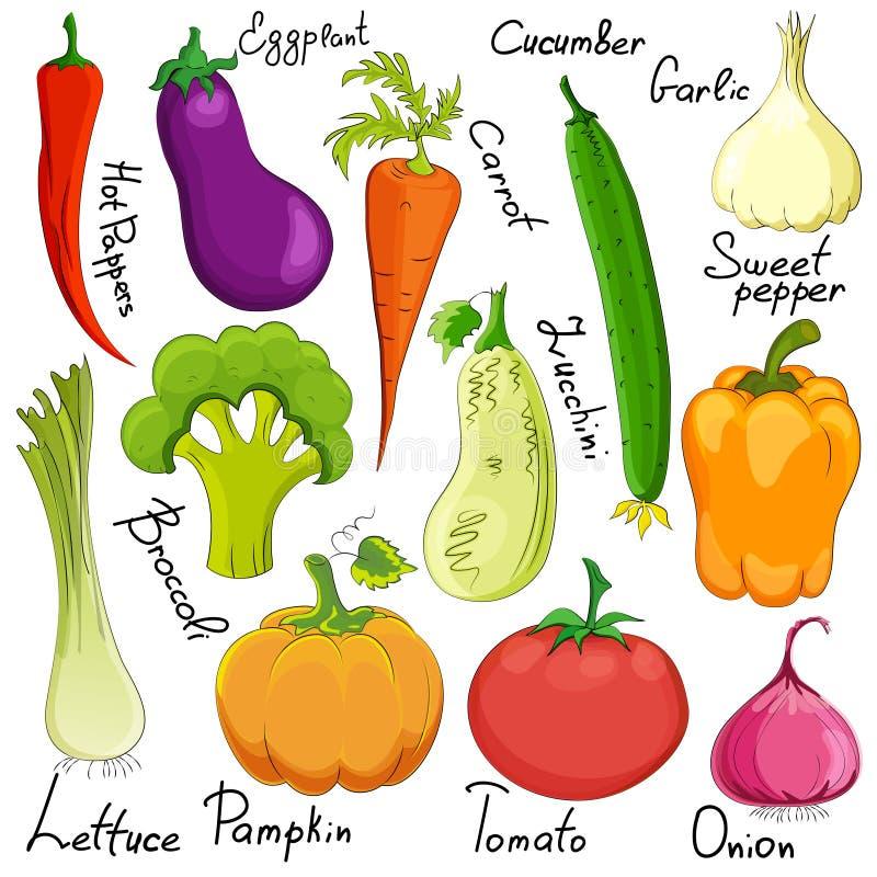 Desenhos animados vegetais engraçados isolados ilustração royalty free