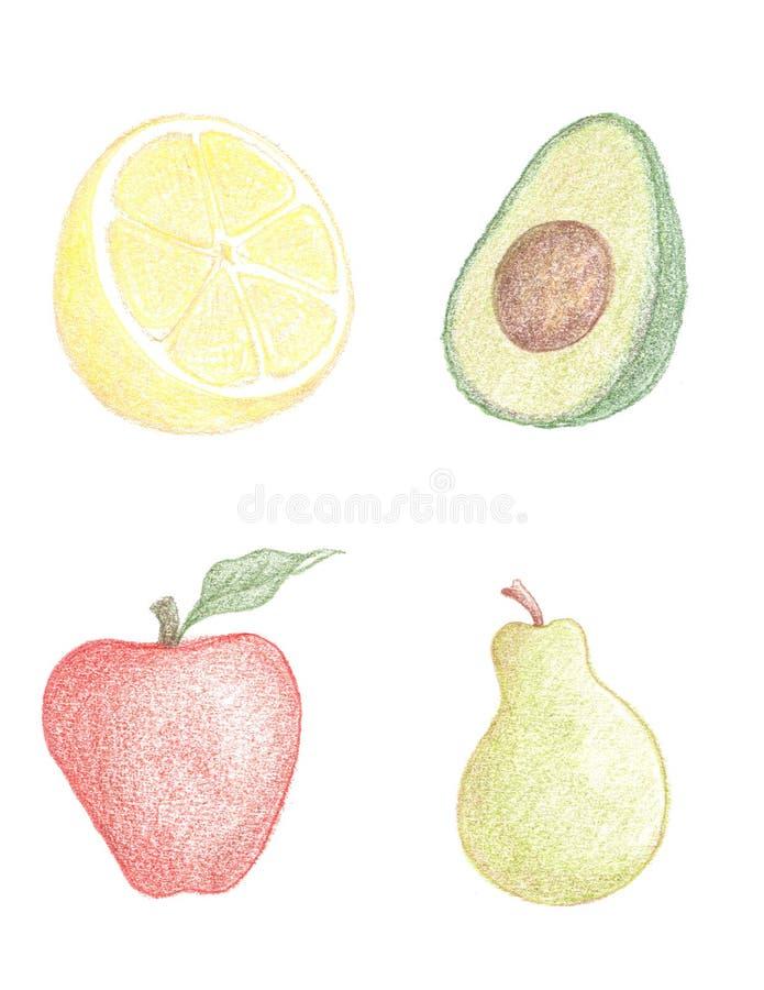 Desenhos da fruta ilustração royalty free