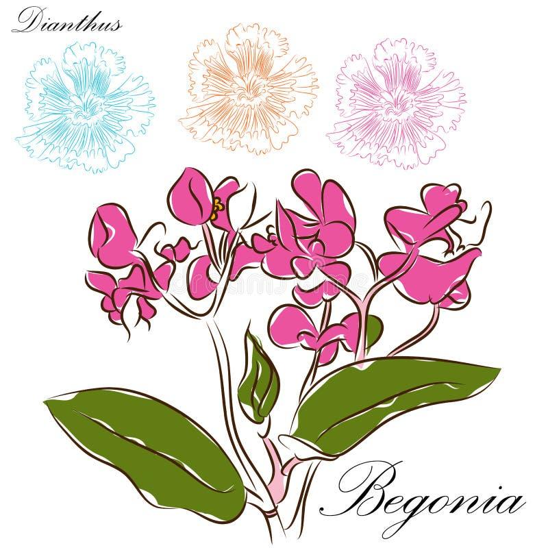 Desenhos de escova florais ilustração do vetor