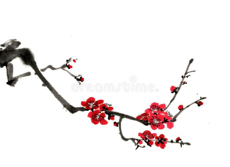 desenhos do Chinês-estilo, esboços, flor da ameixa fotografia de stock royalty free