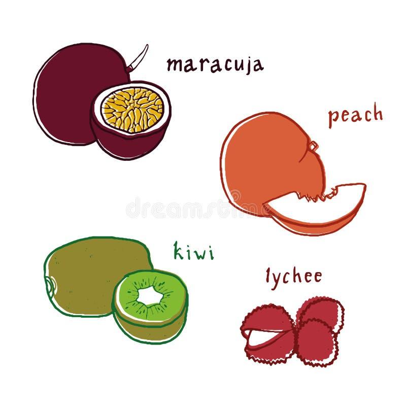 Desenhos exóticos do sabor do fruto ajustados imagem de stock royalty free