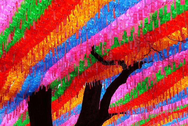 Deseos en árbol foto de archivo libre de regalías