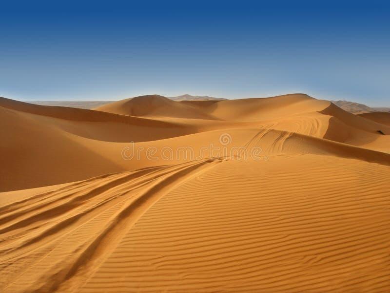 The desert royalty free stock image