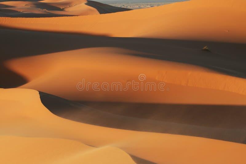 Download Desert stock image. Image of natural, dune, hummock, sand - 14861683