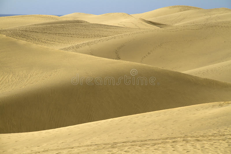 Desert royalty free stock photos