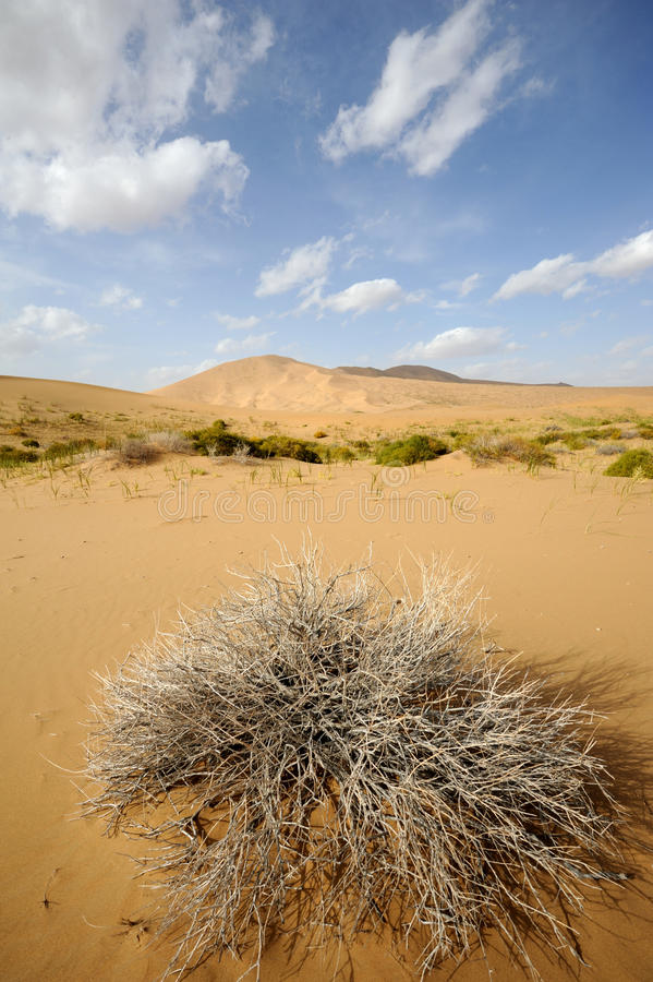 Download Desert stock image. Image of hill, gobi, ecology, horizon - 27524149