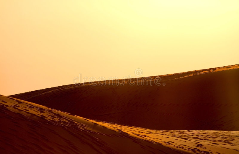 Desert. During bright after noon sun light royalty free stock image