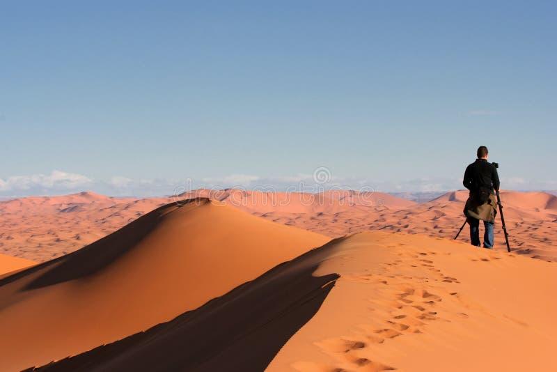 Download In the Desert stock photo. Image of vegetation, photographer - 5321528
