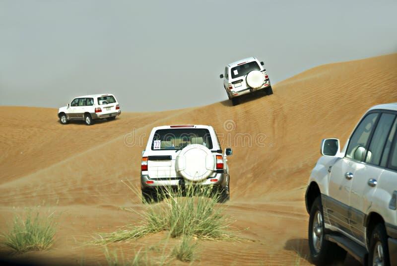 Desert adventure stock image
