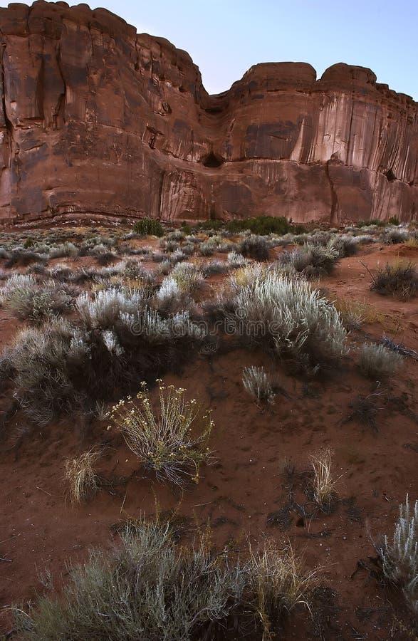 Desert, Arches N.P., Utah stock photography