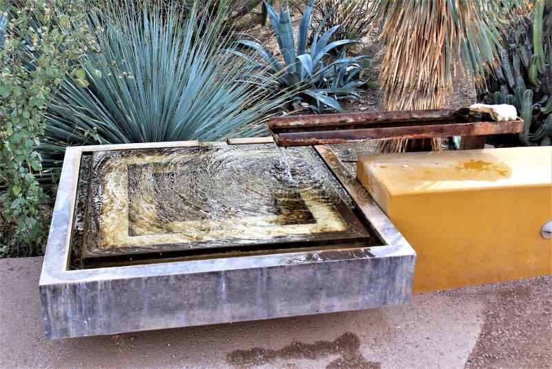 Desert Botanical Garden Phoenix, Arizona, United States royalty free stock image