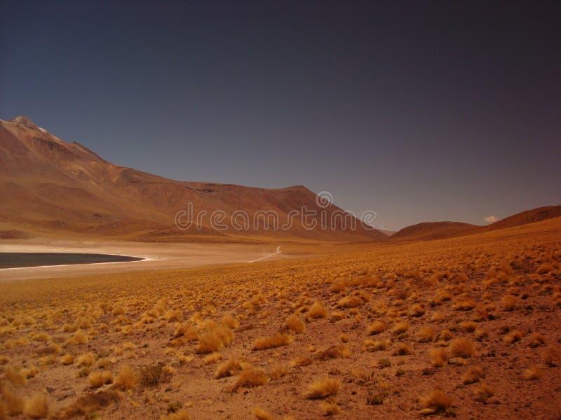 Desert In Chile Free Public Domain Cc0 Image