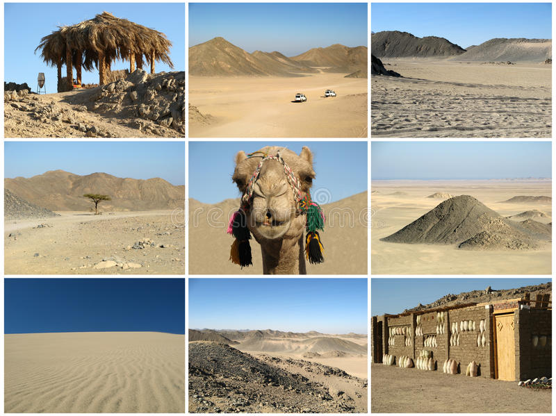 Desert collage stock images