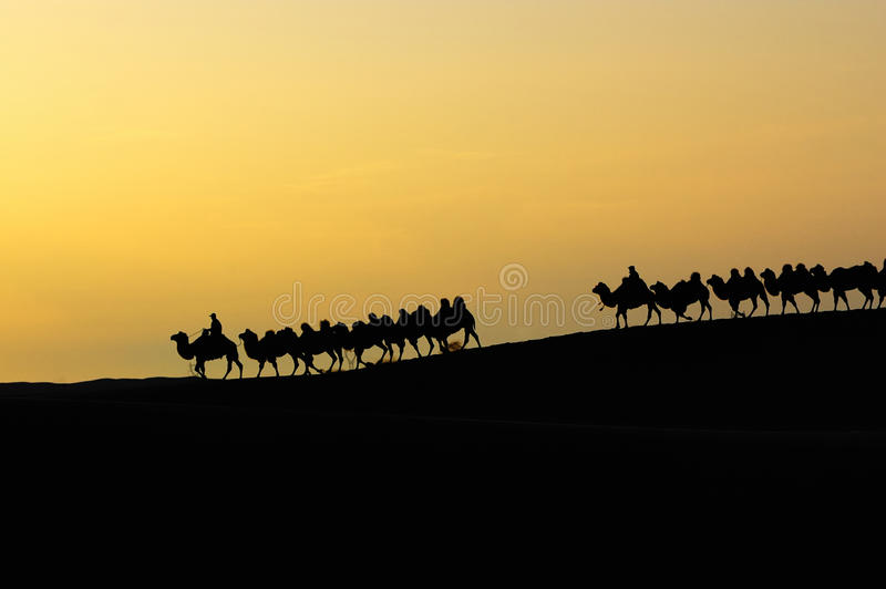 Download Desert dawn stock image. Image of animals, hill, brae - 12534363
