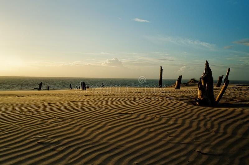 Desert De Dunes Free Public Domain Cc0 Image