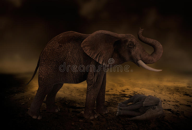 Desert drought elephant. Arid dry desert drought with elephant standing over her baby
