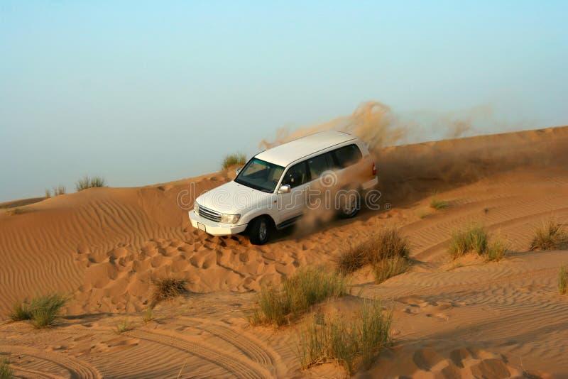 Desert fun drive. Dune bashing in the desert royalty free stock images